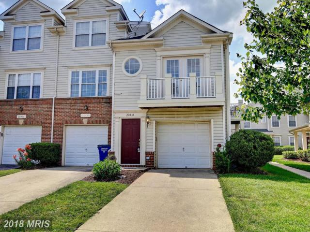 20433 Alderleaf Terrace, Ashburn, VA 20147 (#LO10265583) :: The Withrow Group at Long & Foster
