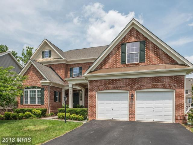 44124 Riverpoint Drive, Leesburg, VA 20176 (#LO10265695) :: Circadian Realty Group