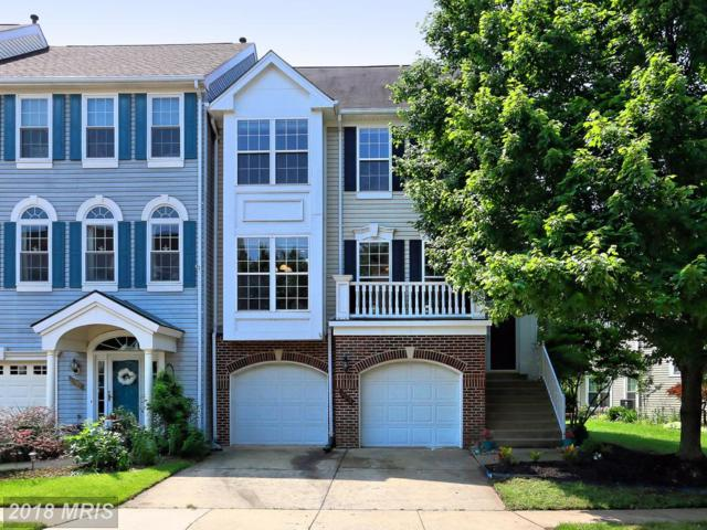 44091 Rising Sun Terrace, Ashburn, VA 20147 (#LO10266112) :: Jim Bass Group of Real Estate Teams, LLC