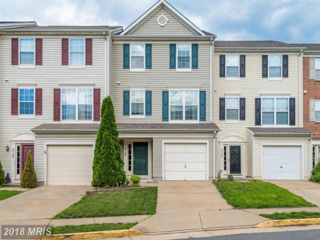 44168 Paget Terrace, Ashburn, VA 20147 (#LO10266222) :: Jim Bass Group of Real Estate Teams, LLC