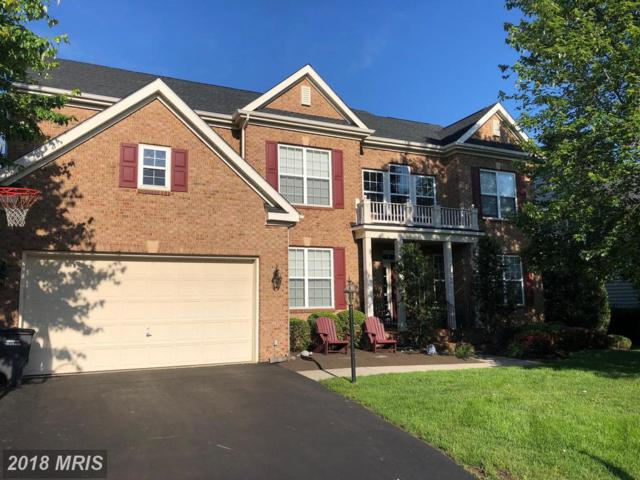 24793 High Plateau Court, Aldie, VA 20105 (#LO10266402) :: The Greg Wells Team