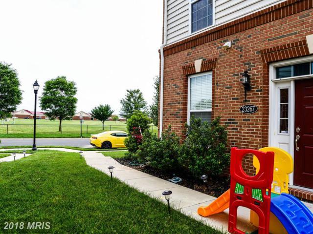 23267 Carters Meadow Terrace, Ashburn, VA 20148 (#LO10266408) :: Bob Lucido Team of Keller Williams Integrity