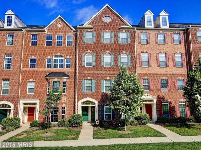 21682 Pattyjean Terrace, Ashburn, VA 20147 (#LO10268389) :: The Withrow Group at Long & Foster