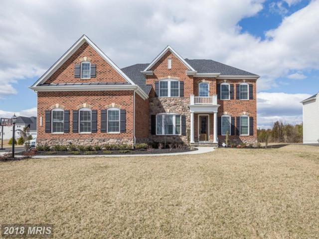 26393 Linton Pasture Place, Centreville, VA 20120 (#LO10268552) :: Wilson Realty Group
