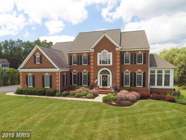 16703 Chestnut Overlook Drive, Purcellville, VA 20132 (#LO10268775) :: LoCoMusings