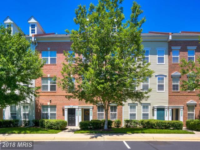 42512 Hollyhock Terrace, Ashburn, VA 20148 (#LO10269786) :: Circadian Realty Group