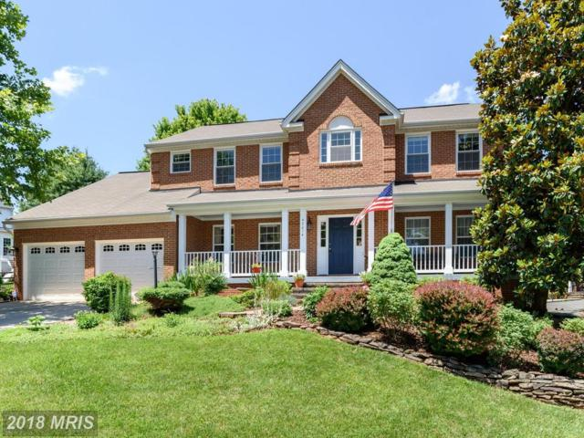 47014 Bainbridge Place, Sterling, VA 20165 (#LO10269842) :: The Withrow Group at Long & Foster