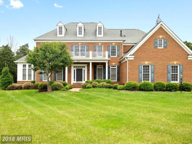42871 Iron Bit Place, Chantilly, VA 20152 (#LO10270442) :: The Vashist Group