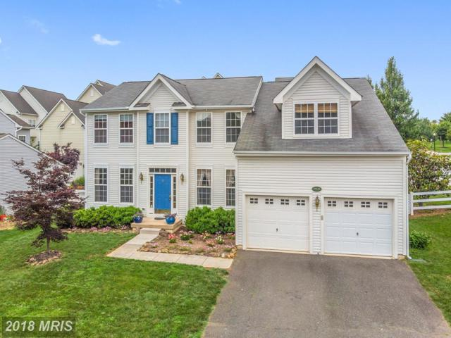 17549 Tedler Circle, Round Hill, VA 20141 (#LO10270759) :: The Greg Wells Team