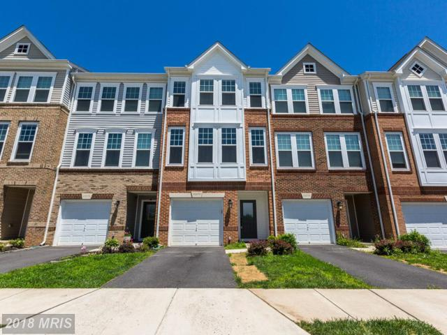 43274 Novi Terrace, Ashburn, VA 20147 (#LO10271315) :: The Greg Wells Team