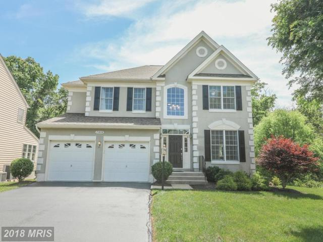 25808 Flyaway Court, Chantilly, VA 20152 (#LO10271386) :: AJ Team Realty