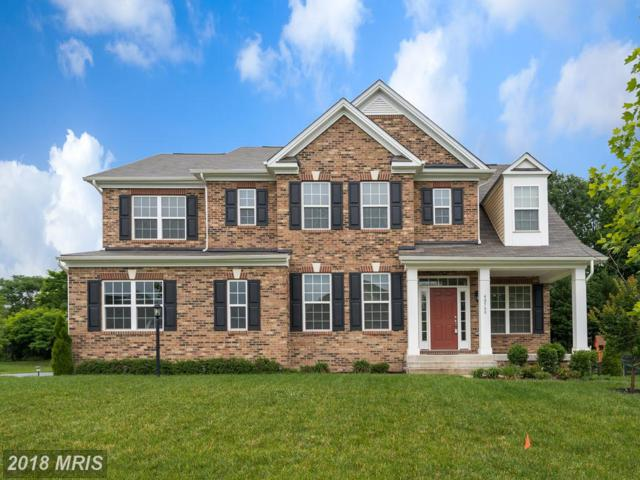 40560 Aldie Springs Drive, Aldie, VA 20105 (#LO10271595) :: The Vashist Group