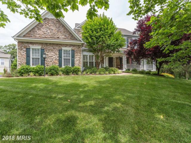 25086 Kingscote Court, Chantilly, VA 20152 (#LO10271953) :: AJ Team Realty