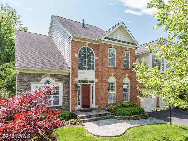 43941 Riverpoint Drive, Leesburg, VA 20176 (#LO10271997) :: Circadian Realty Group