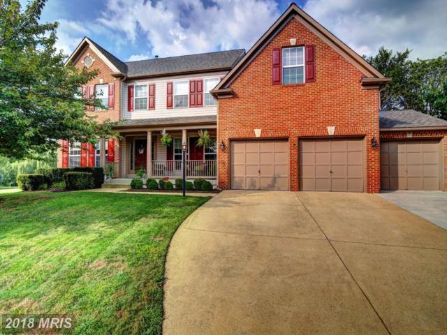 21263 Dubois Court, Ashburn, VA 20147 (#LO10272069) :: Jim Bass Group of Real Estate Teams, LLC