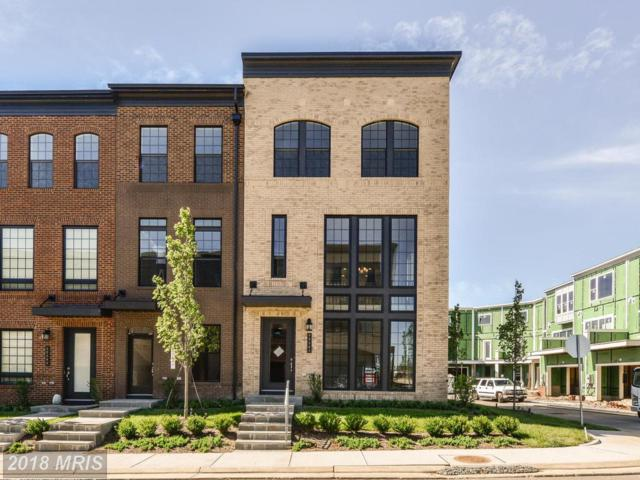 42281 Porter Ridge Terrace, Ashburn, VA 20148 (#LO10272148) :: LoCoMusings