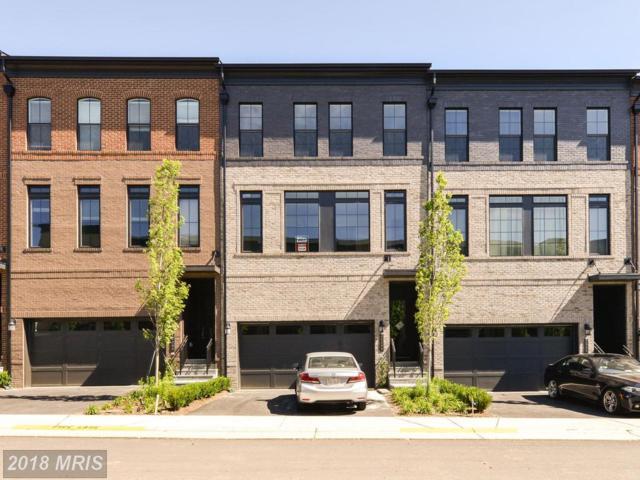 42288 Porter Ridge Terrace, Ashburn, VA 20148 (#LO10272170) :: LoCoMusings