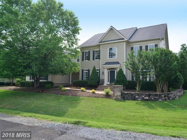 41707 Putters Green Court, Leesburg, VA 20176 (#LO10272182) :: Pearson Smith Realty
