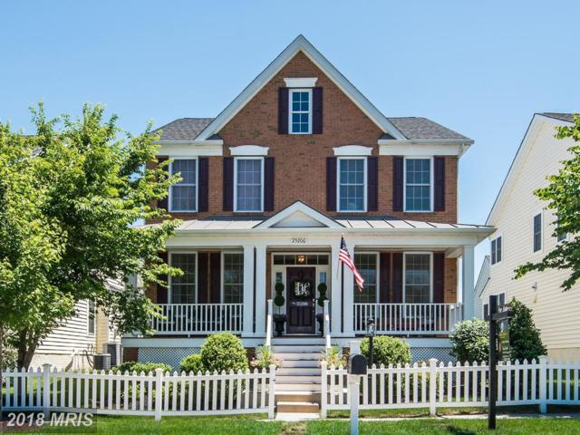 25206 Justice Drive, Chantilly, VA 20152 (#LO10272486) :: AJ Team Realty