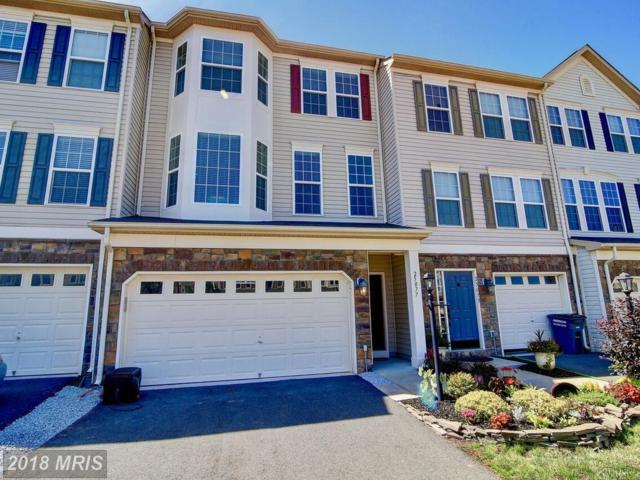 25077 Cypress Mill Ter, Aldie, VA 20105 (#LO10272676) :: The Vashist Group