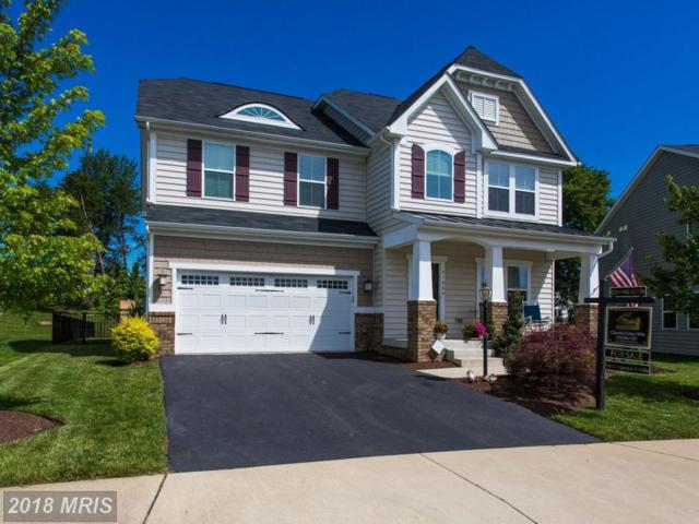 41664 Truly Circle, Aldie, VA 20105 (#LO10272873) :: The Vashist Group