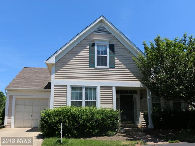 43226 Yorkville Terrace, Ashburn, VA 20147 (#LO10273036) :: AJ Team Realty