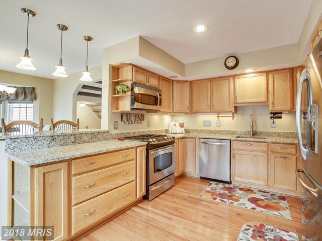 43232 Gatwick Square, Ashburn, VA 20147 (#LO10273065) :: The Greg Wells Team