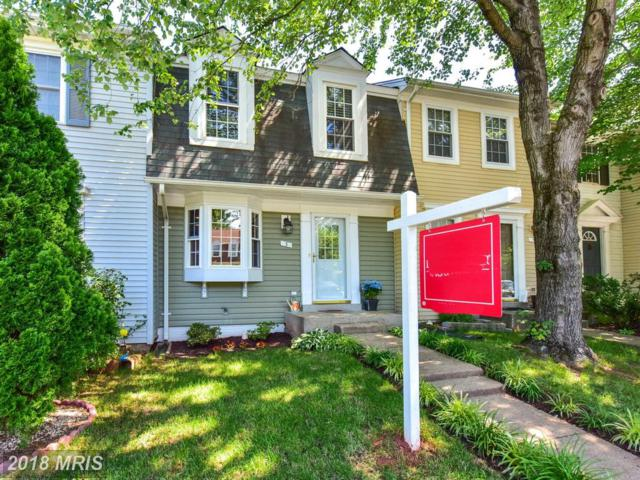 3 Mercer Court, Sterling, VA 20165 (#LO10273766) :: RE/MAX Executives