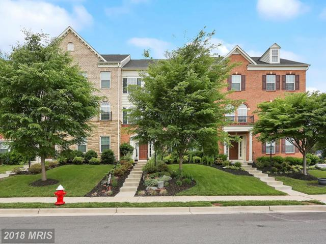 24945 Avonlea Drive, Chantilly, VA 20152 (#LO10273812) :: The Vashist Group