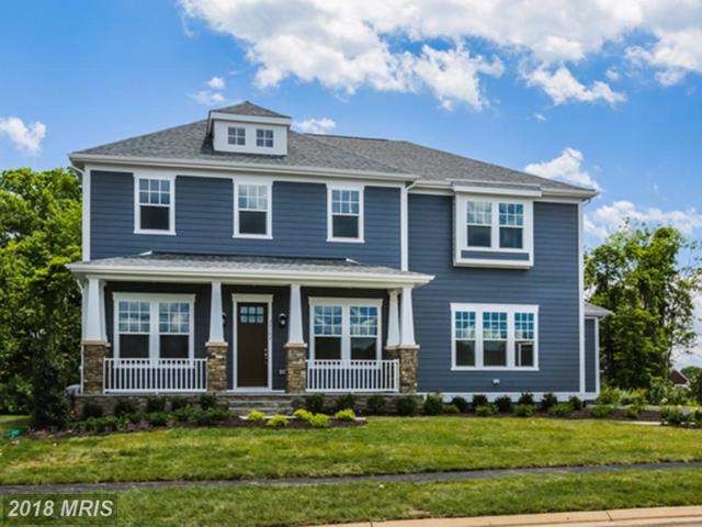 12345 River Cane Place, Aldie, VA 20105 (#LO10273851) :: The Vashist Group