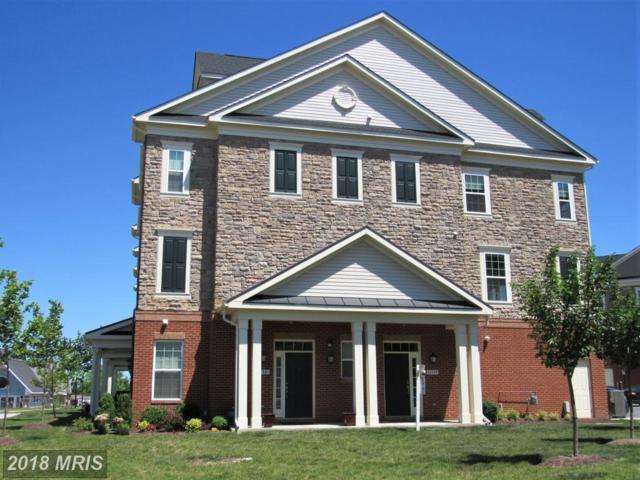 42581 Sunset Ridge Square, Ashburn, VA 20148 (#LO10275037) :: RE/MAX Executives