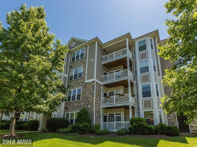 503 Sunset View Terrace SE #106, Leesburg, VA 20175 (#LO10275727) :: LoCoMusings