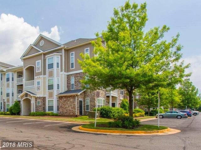 505 Sunset View Terrace SE #205, Leesburg, VA 20175 (#LO10275739) :: LoCoMusings