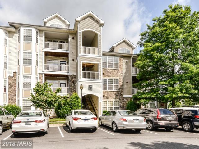 502 Sunset View Terrace SE #306, Leesburg, VA 20175 (#LO10276026) :: The Greg Wells Team