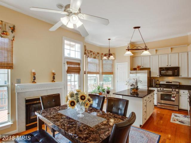 20506 Willoughby Square, Sterling, VA 20165 (#LO10276358) :: The Greg Wells Team