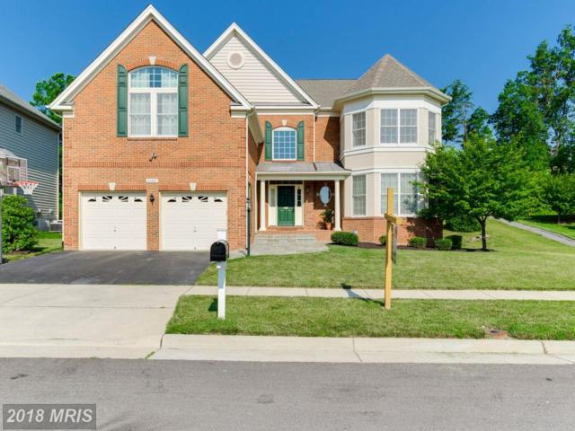 25287 Justice Drive, Chantilly, VA 20152 (#LO10276731) :: The Greg Wells Team