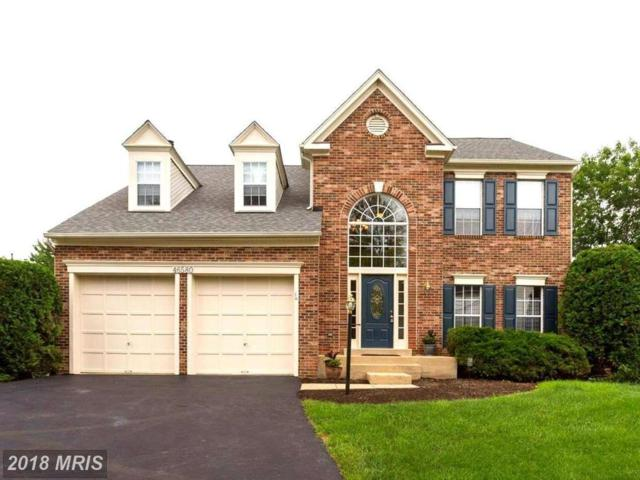 46580 Carlyle Court, Sterling, VA 20165 (#LO10277422) :: RE/MAX Cornerstone Realty