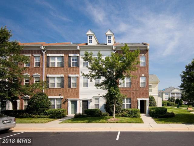 42478 Hollyhock Terrace, Ashburn, VA 20148 (#LO10277455) :: Circadian Realty Group
