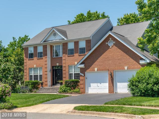 44218 Palladian Court, Ashburn, VA 20147 (#LO10277608) :: RE/MAX Cornerstone Realty