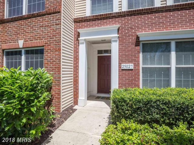 25027 Justice Drive, Chantilly, VA 20152 (#LO10277768) :: The Greg Wells Team