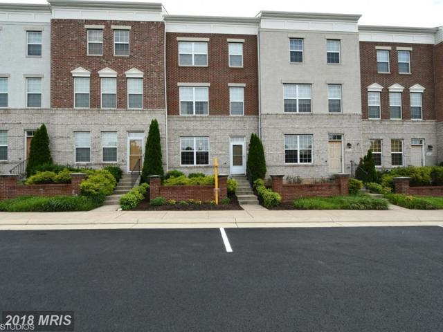 22674 Parkland Farms Terrace, Ashburn, VA 20148 (#LO10278000) :: AJ Team Realty
