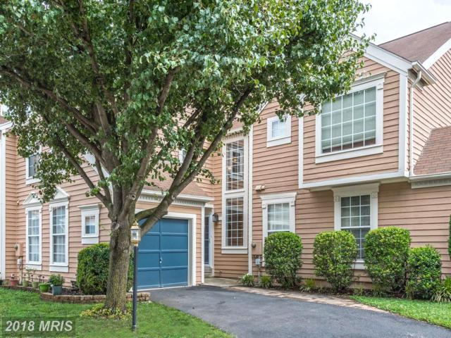 21127 Crocus Terrace, Ashburn, VA 20147 (#LO10278066) :: The Greg Wells Team