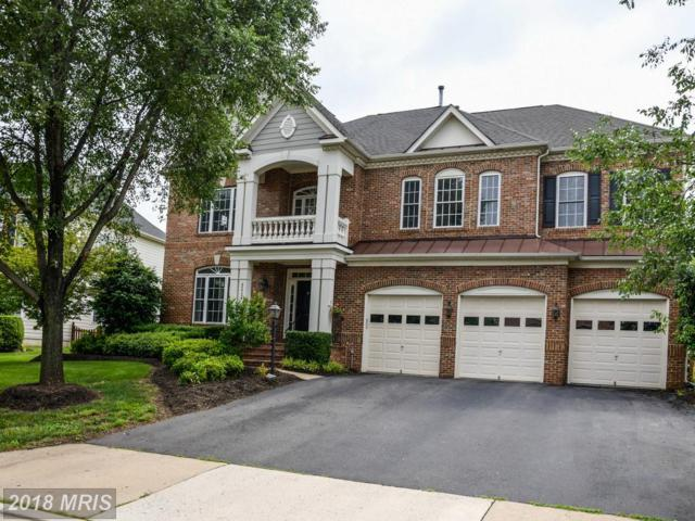 42729 Ridgeway Drive, Broadlands, VA 20148 (#LO10278102) :: The Greg Wells Team