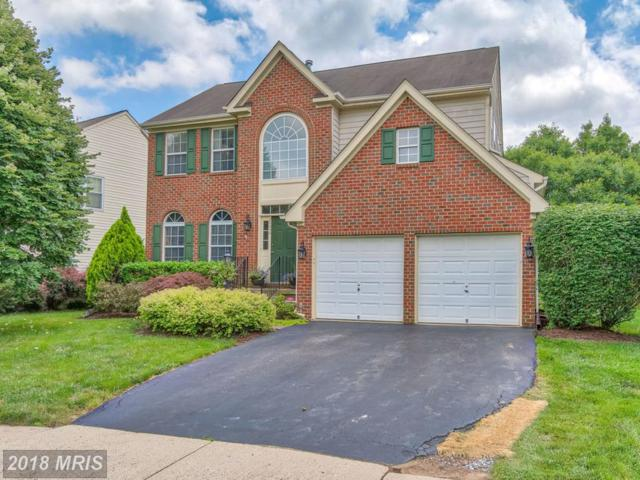 20454 Cherrystone Place, Ashburn, VA 20147 (#LO10278118) :: The Greg Wells Team
