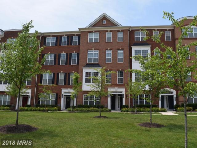 23484 Bluemont Chapel Terrace #23484, Ashburn, VA 20148 (#LO10278662) :: Network Realty Group