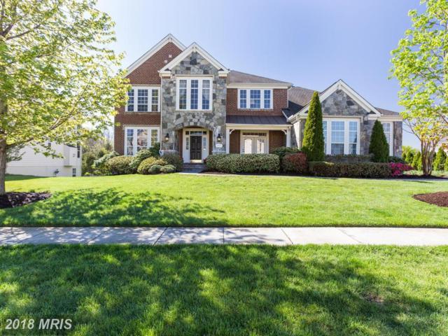 43385 Cedar Pond Place, Chantilly, VA 20152 (#LO10278888) :: Bic DeCaro & Associates