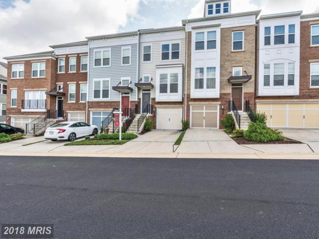 22522 Highcroft Terrace, Ashburn, VA 20148 (#LO10278925) :: Circadian Realty Group
