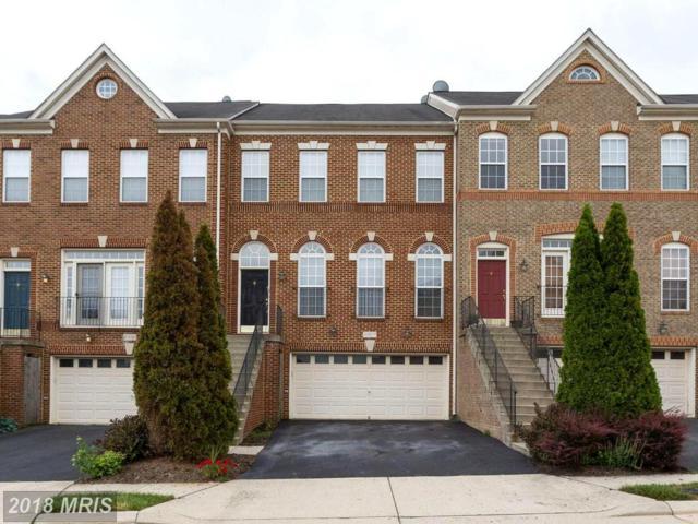 41917 Cinnabar Square, Aldie, VA 20105 (#LO10278966) :: RE/MAX Gateway