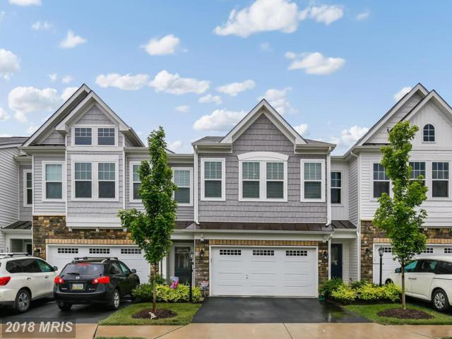 42301 Benfold Square, Ashburn, VA 20148 (#LO10279514) :: Network Realty Group