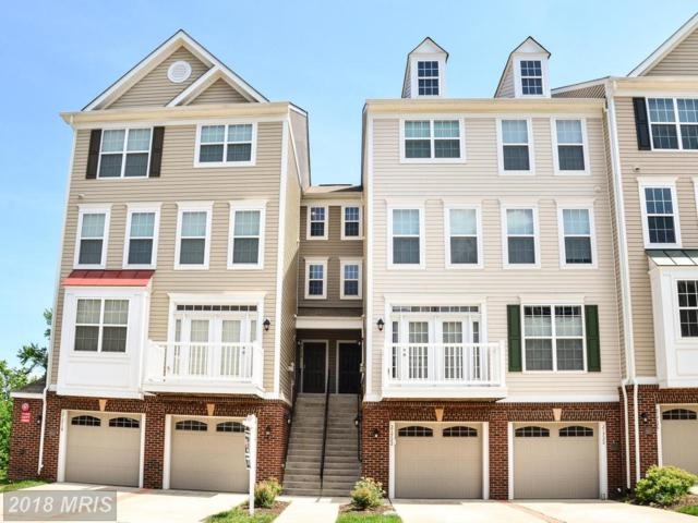 21718 Indian Summer Terrace, Sterling, VA 20166 (#LO10280822) :: Charis Realty Group